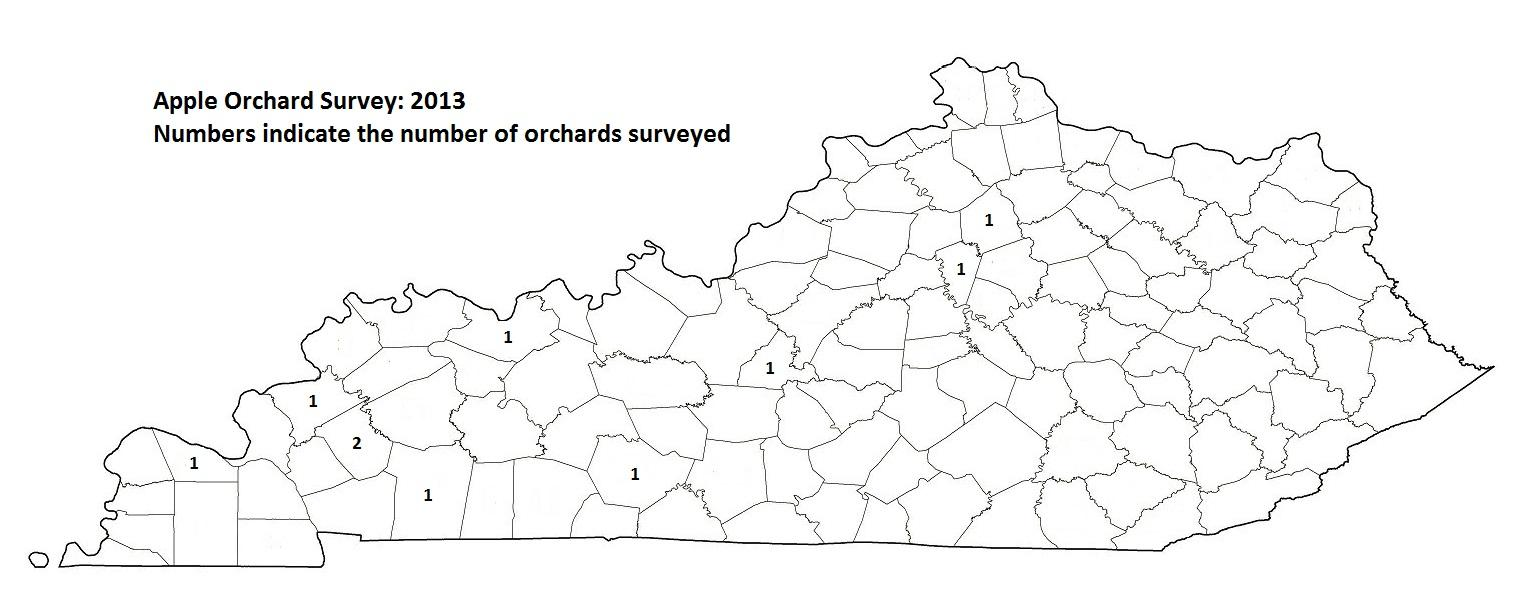 Apple Orchard Survey 2013