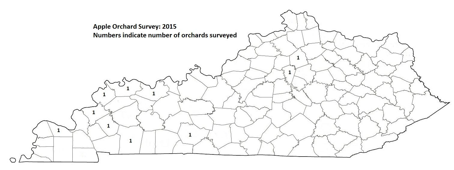 Apple Orchard Survey 2015