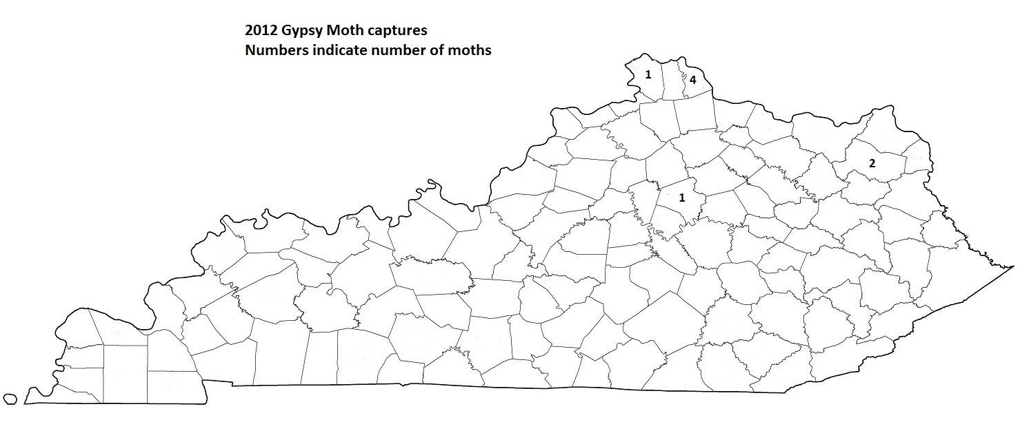 2012 Gypsy Moth Captures in Numbers