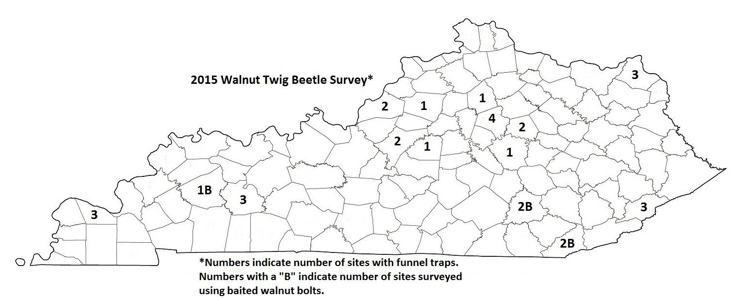 Walnut Twig Beetle Survey 2015