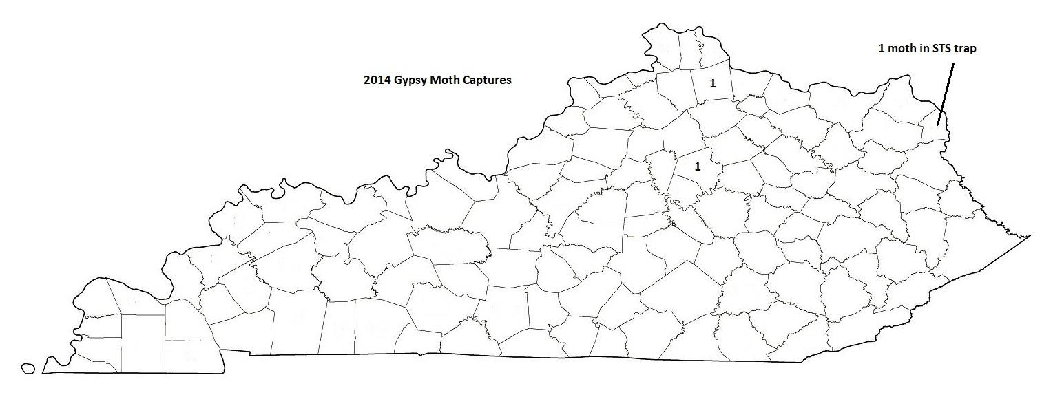 2014 Gypsy Moth Captures in Numbers